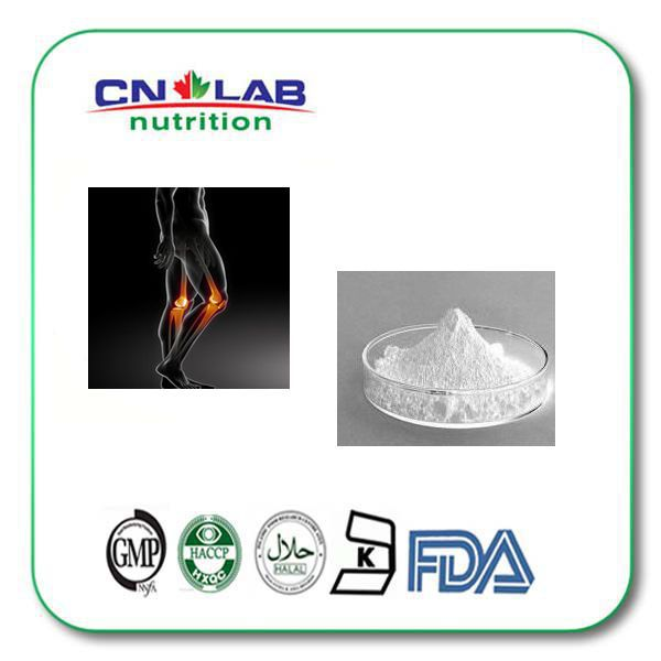 95% best glucosamine chondroitin msm complex powder supplement(China (Mainland))