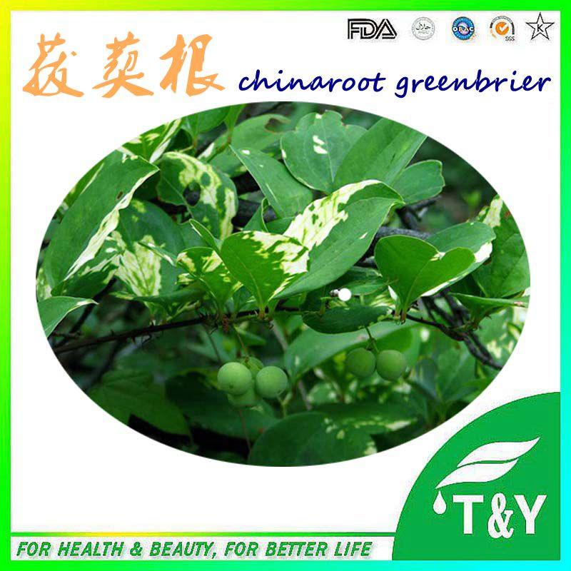 100%pure nature Chinaroot Greenbrier Rhizome extract<br><br>Aliexpress