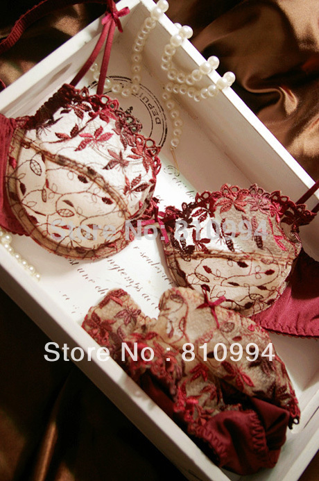 Free shipping fashion plus size transparent sexy lace embroidery women s underwear bra set ABCD cup