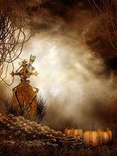 300cm*600cm(10x20ft) halloween background vinyl Falling tenderly human bones pumpkin photo studio backgrounds ZJ