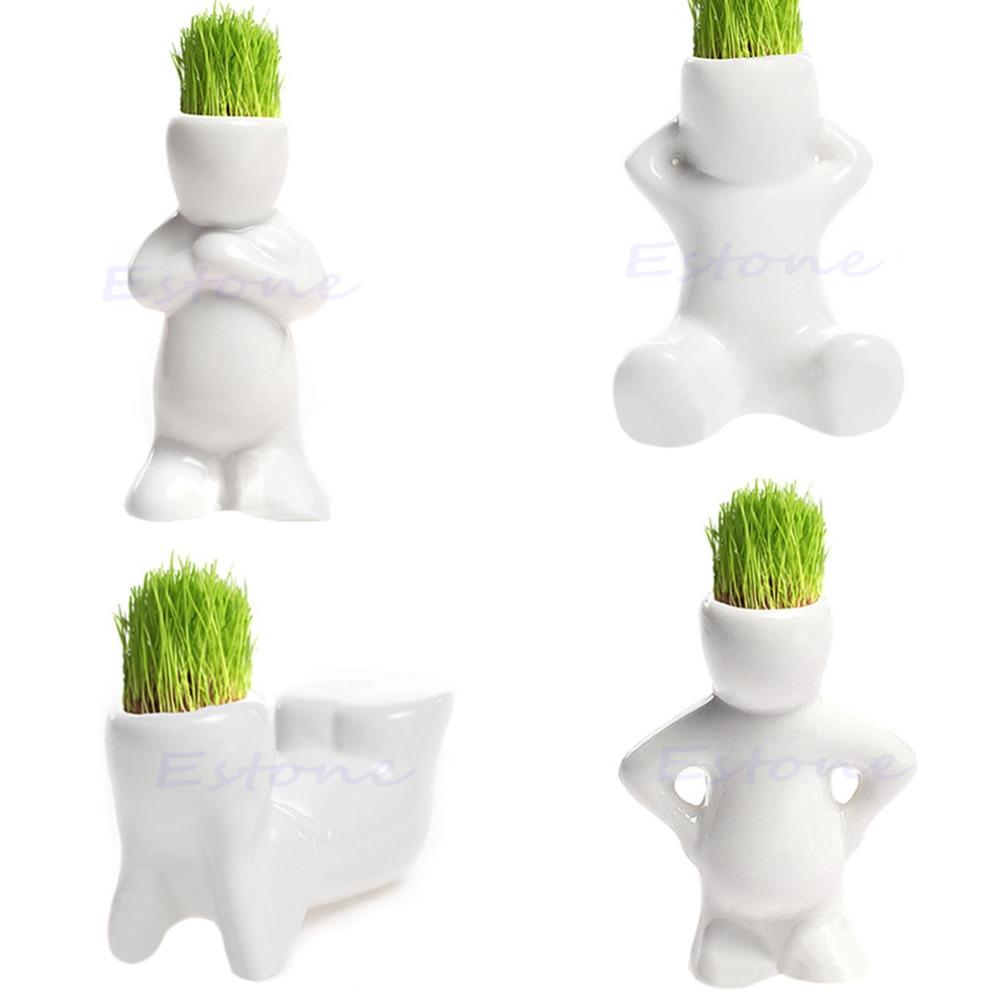 4 shape Mini Novel Bonsai Grass Doll Hair White Lazy Man Plant Garden