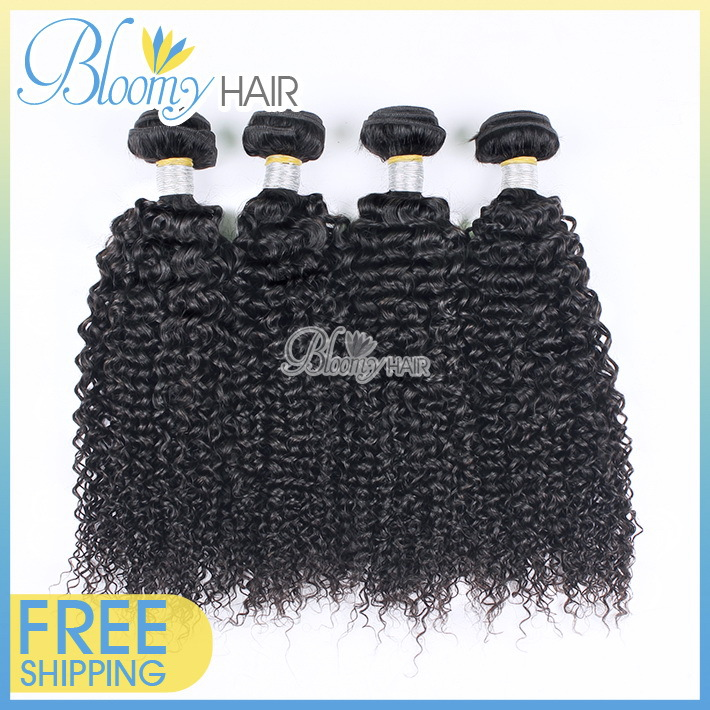 Top Quality 7A Brazilian Curly Virgin Hair Natural Color Rosa Hair Products Popular 4pcs Kinky Curly Virgin Hair Free Shipping(China (Mainland))