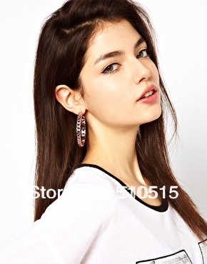 Curb Chain Link Hoop Earrings<br><br>Aliexpress