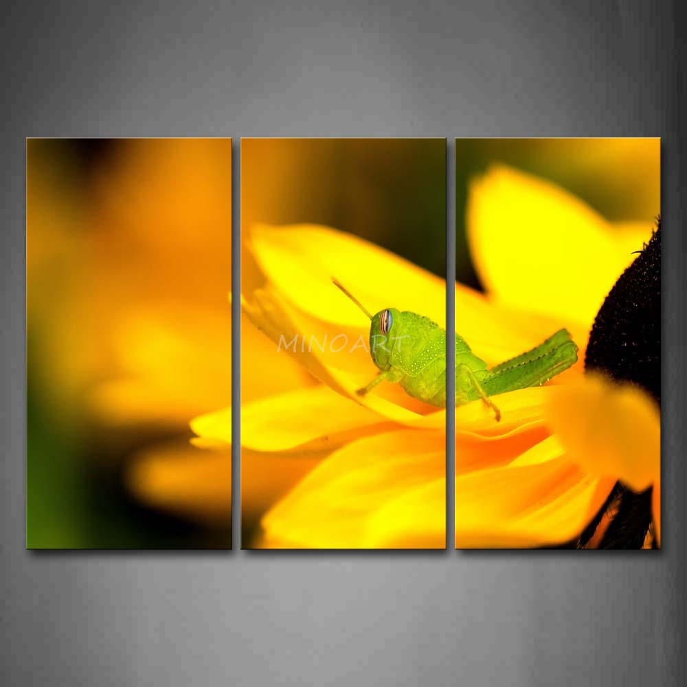 3 Piece Wall Art Painting Grasshopper Crawl On Yellow Flower Print On Canvas The Picture Animal 4 Pictures(China (Mainland))