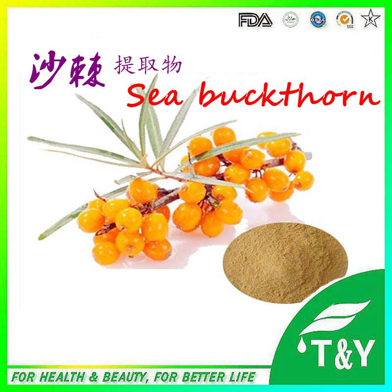 Best quality wild and natural sea buckthorn fruit extract<br><br>Aliexpress