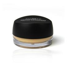 Professional Concealer Foundatoin Mousse Studio Face Care Make up Base Highlighter Primer Cosmetics Brand Danni Makeup