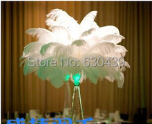 "HOT ! 100pcs/lot 30-35CM /12-14""  Ostrich Feather Plume wedding party decoration FREE SHIPPING(China (Mainland))"