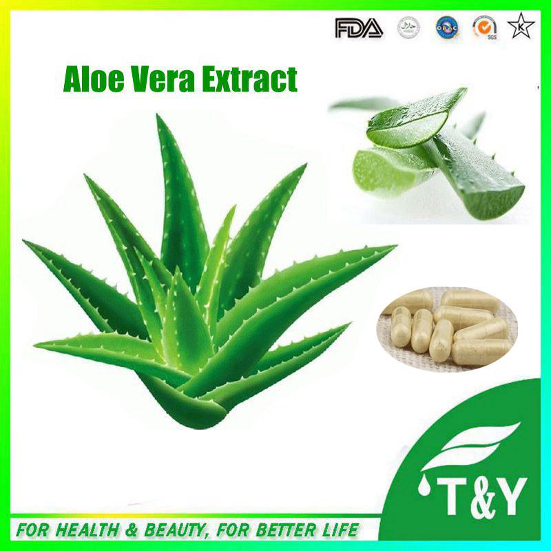 health food supplement l-carnitine quick slimming capsule Aloe Vera 500mg*900pcs Capsules(China (Mainland))