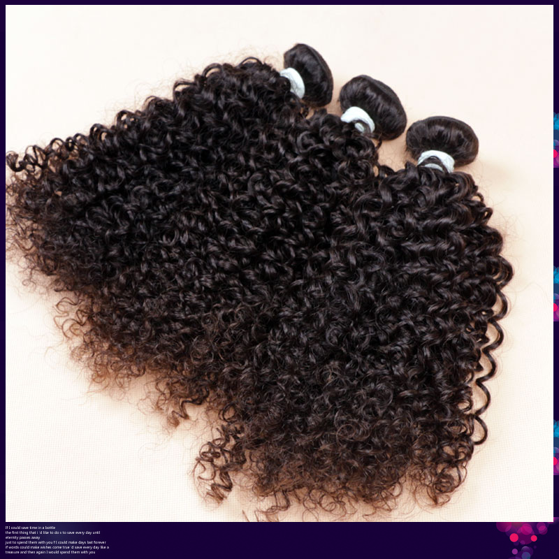 Virgin Brazilian Curly Hair Bundle Deals 84