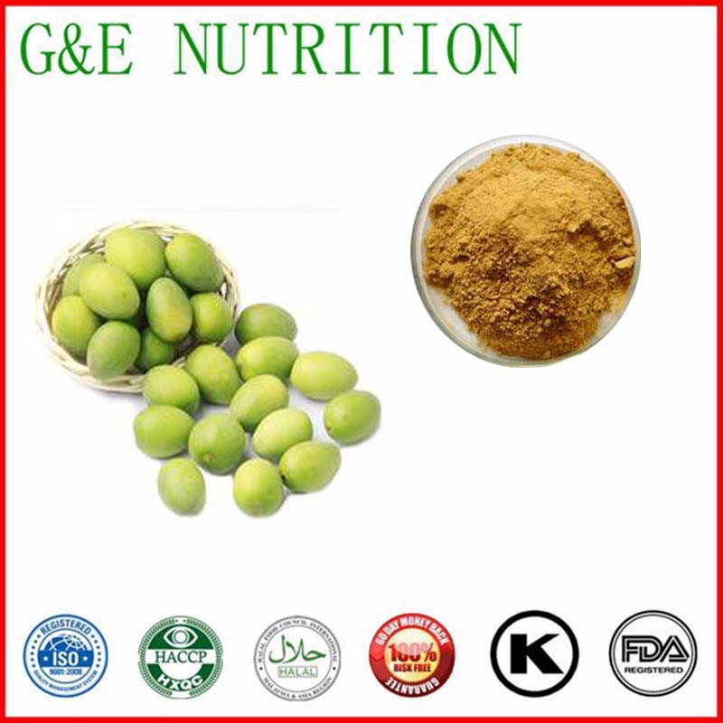 600g Pure Chinese olive/ Fructus Canarli/ white canary tree fruit Extract with free shipping<br><br>Aliexpress
