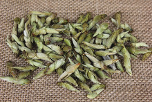 Yunnan White Tea Buds Of Ancient Wild Spore forming Pu er Quezui Queshe S818