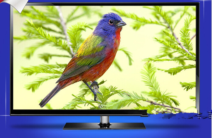 Multifunction slim narrow 26-inch LED LCD TV / Monitor television smart tv(China (Mainland))