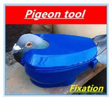 Pigeon Werkzeuge Festen box Feed Taube gegebenen medikamente gerät Blau Taube Ausrüstung Vogel halter Freies verschiffen(China (Mainland))