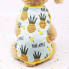 Новые летние с воздухопроницаемой сеткой для животных одежда милые фрукты печатные ПЭТ кошка наряд для маленьких собачек жилет футболка юб...(China)
