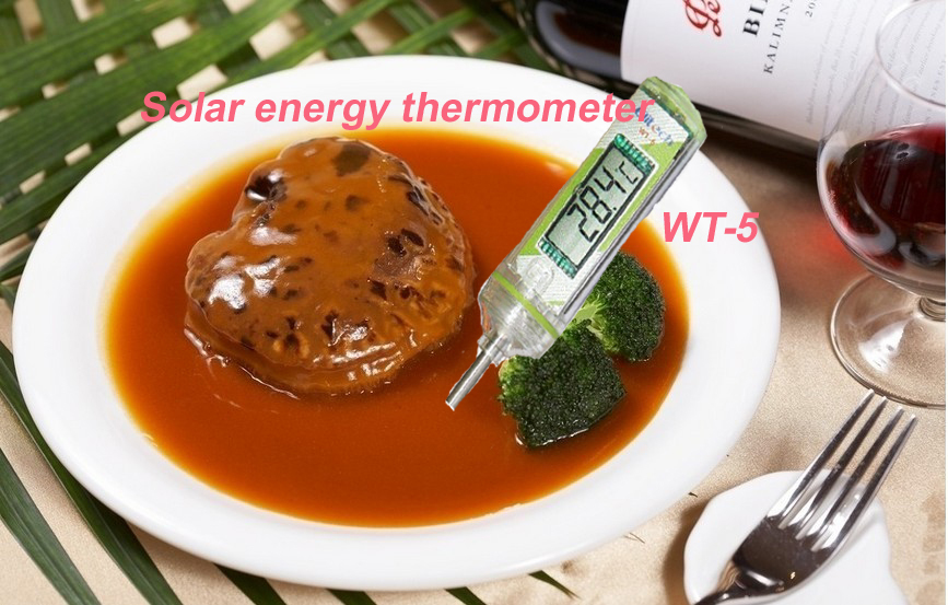 pen style solar energy thermometer WT-6  food BBQ digital thermometer