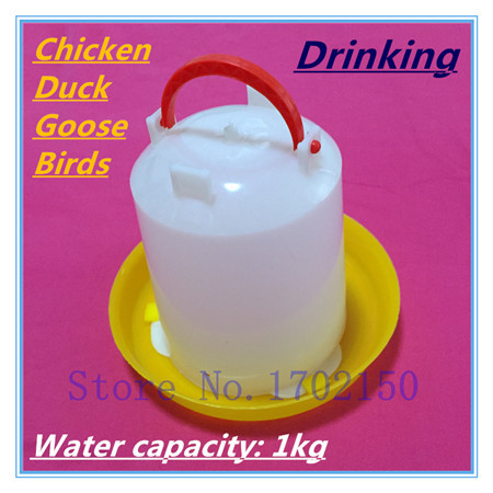 1kg Chicken kettle Drinking Fountains NOTE empty drinker Chicken tool Farming equipment wholesale Free shipping(China (Mainland))