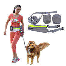Multifunction Elastic Nylon Belt Running Dog Leash Padded Waist With Reflective Strip + Zipper Bag + Bottle Holder for Dog Cat(China (Mainland))