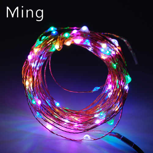 10m 33ft 100 LEDs LED Copper Wire Starry String Lights  For Seasonal Decorative Christmas Holiday, Wedding, Party Decoration<br><br>Aliexpress