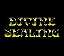 Sega games card – Divine Sealing For 16 bit Sega MegaDrive Genesis Sega Game console Support custom game