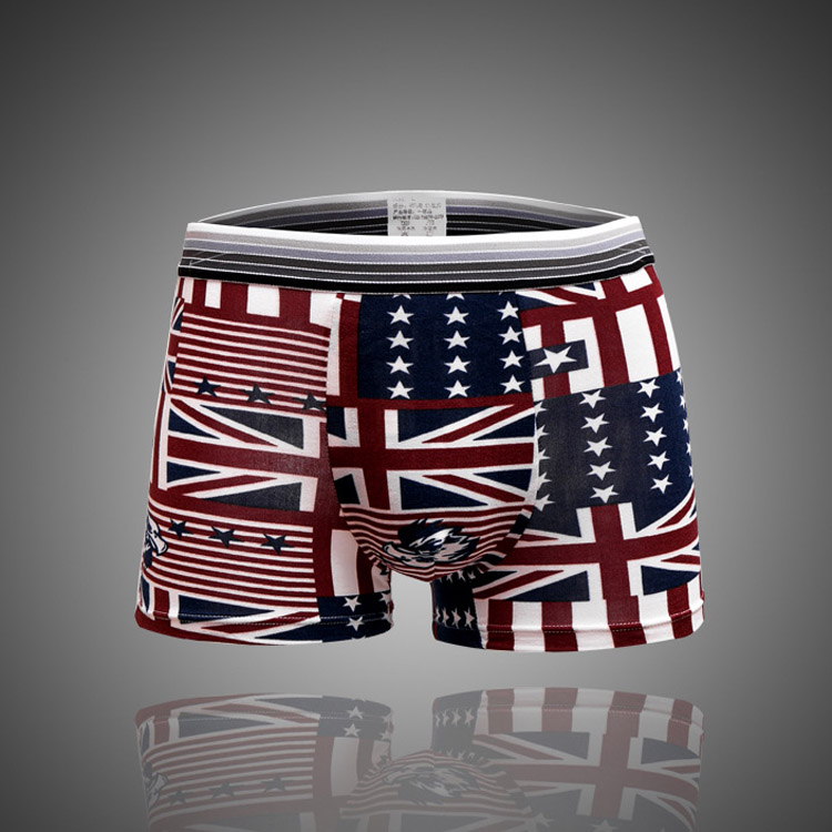 5 pcs/lot fashion Sexy ice silk men boxer shorts men's boxers mens underwear Comfortable breathable shorts print men underpants(China (Mainland))