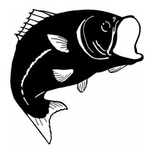 15*15.4CM Bass Fishing Car Decals Stickers Motorcycle Styling Accessories Outdoor Sports Fish Stickers C2-0511