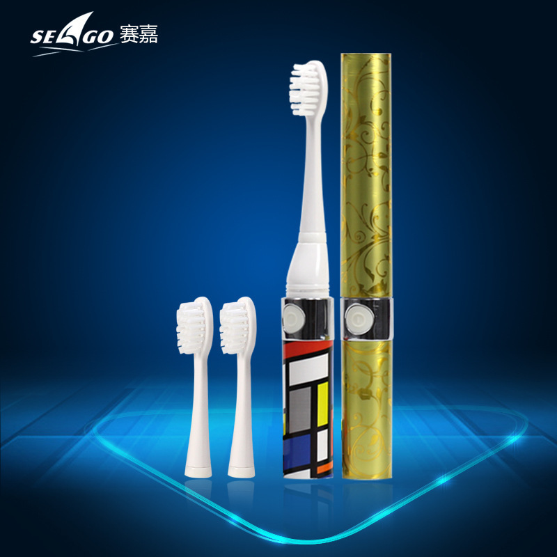 New Intelligent Battery Operated Whiten Teeth Portable Seago Sonic Electric Toothbrush SG-623 With 3pcs DuPont Nylon Brush Heads(China (Mainland))