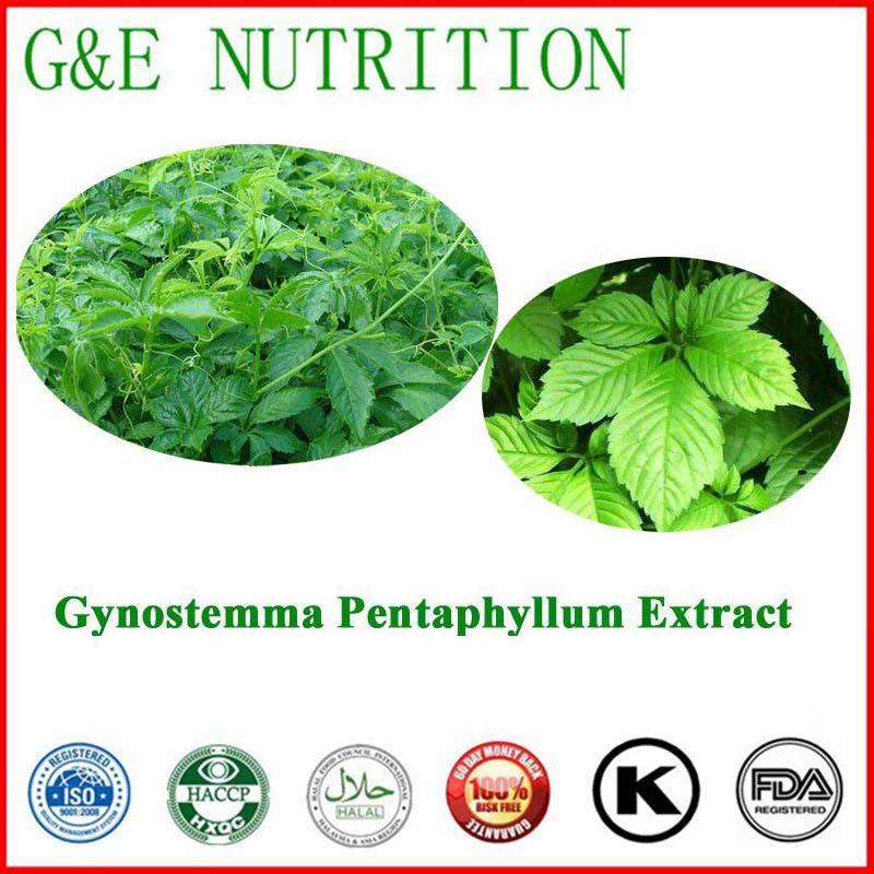 100% Natural Gynostemma Extract/gynostemma pentaphyllum extract/gynostemma extract powder      20:1  700g