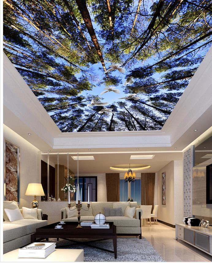 Ciel plafonds promotion achetez des ciel plafonds for Fond plafond salon