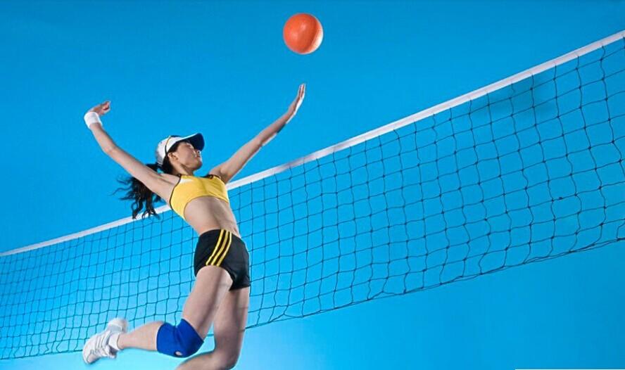 Good deal International Match Standard Official Sized Volleyball Net Netting Replacement(China (Mainland))