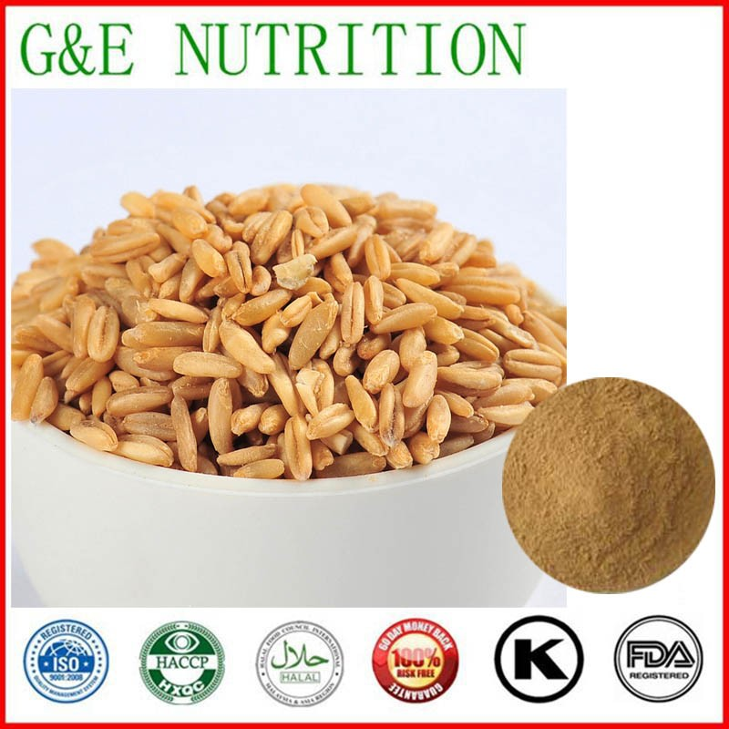 400g Top grad Oat / Oatmeal Extract with free shipping<br><br>Aliexpress