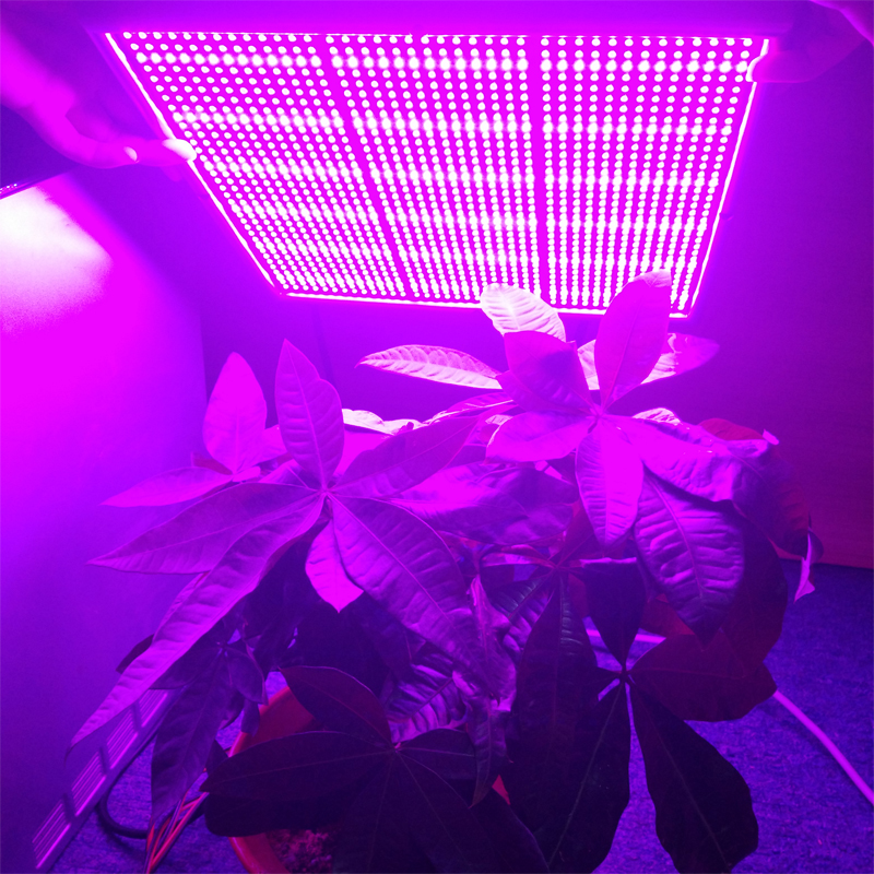 free shipping Wholesale120W 1131Red:234 Blue  Indoor LED Grow Light 660nm Grow Leds for Hydroponic lightings Dropshipping