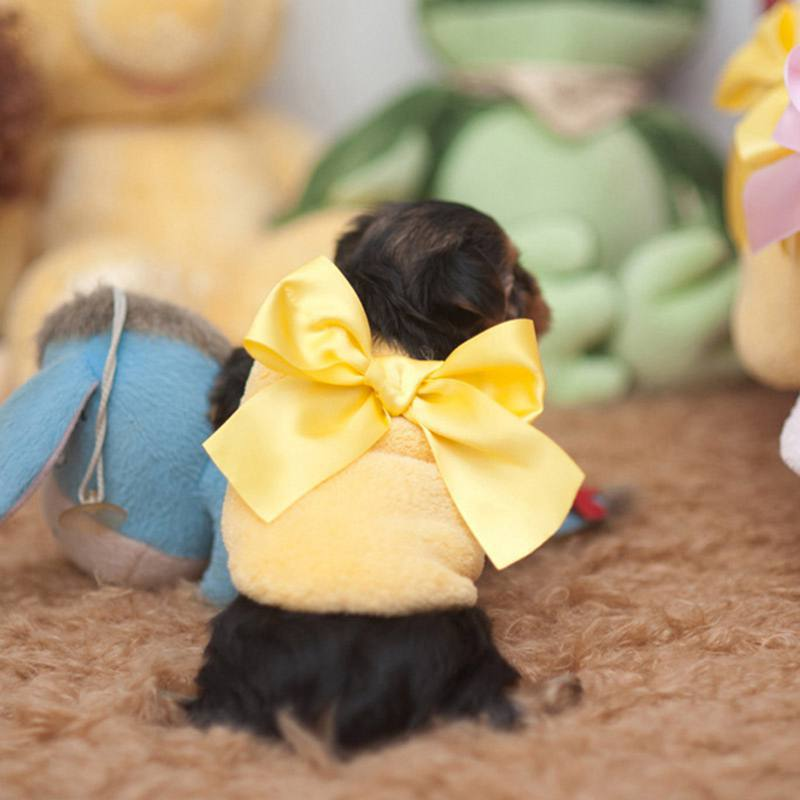Baby Dogs Fleece Vest Big Bow Small Pet Dog Warm