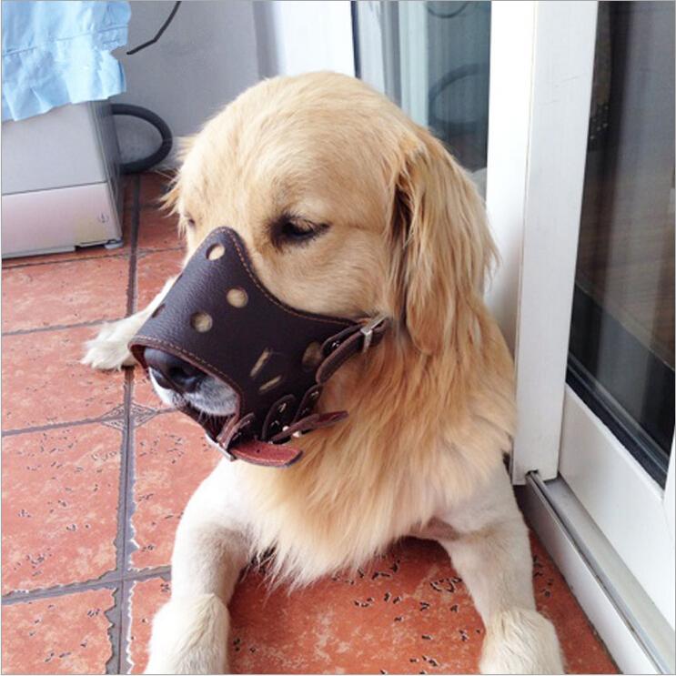 Top quality adjustable leather pet dog muzzle training small large big soft basket mesh dog muzzle anti bite barking(China (Mainland))