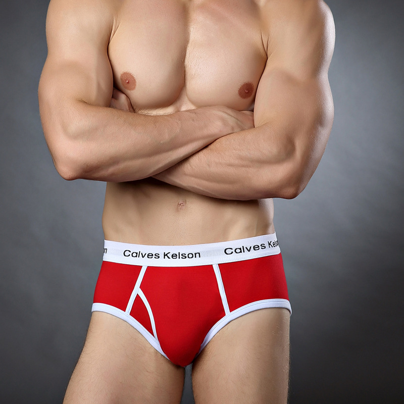 New arrival men boxer shorts male underpants panties men underwear cotton u pouch low waist breathable comfortable heathlthy(China (Mainland))
