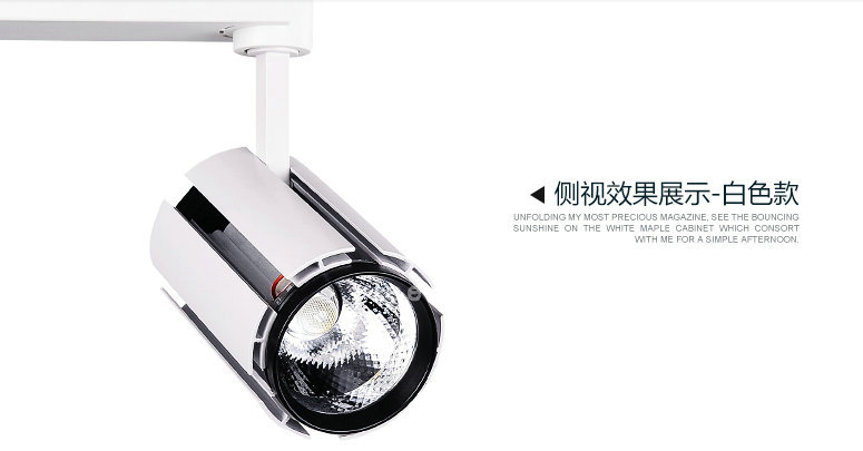 New Arrival Led track light  Hot Sell,2pcs Led Down Light with  20w-30w Power ,led with warm and Cool White Color Lights<br><br>Aliexpress