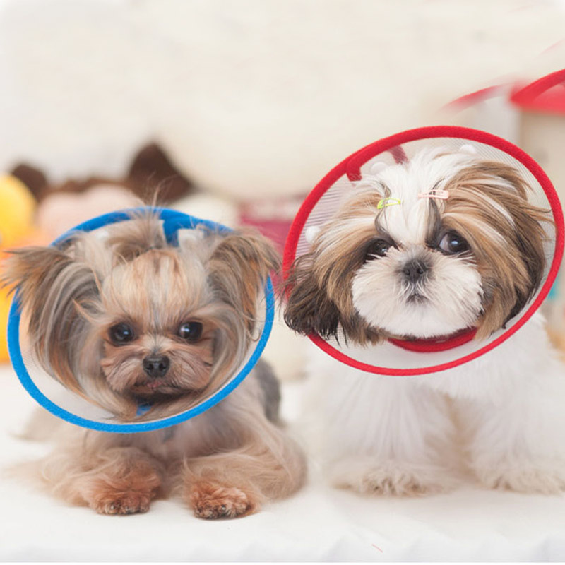 New Arrival Comfy Puppy Dog Cat Cone Plastic Adjustable Pet Small Dog E-Collar Protective and Medical Dog Pet Elizabethan Cone(China (Mainland))