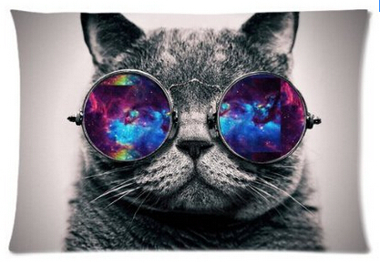 Galaxy Hipster Cat Theme(3D) Funny Cat Wear Color Sunglasses Soft Custom Rectangle Pillowcase Pillow Case Covers 40X60cmOne Side