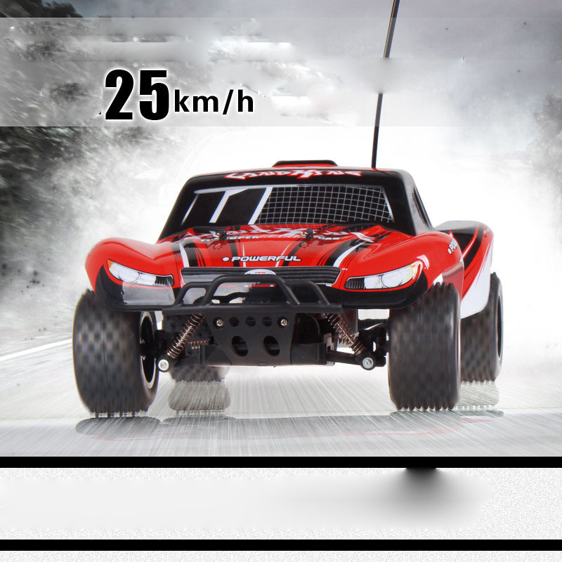 wltoys A999 2.4G 1:24 high speed Rally remote control car rc racing model Children electric car toy A3021307(China (Mainland))