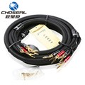 Choseal Top Level HI FI Speaker Wire With U Jack Home Theater Surround Sound System Amplifier
