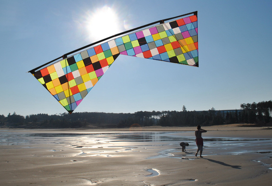 [LUNA KITE] So Beautiful Huge quad line kite Mosaic Color Four line power kite outdoor sport toys Icarex Fabric(China (Mainland))
