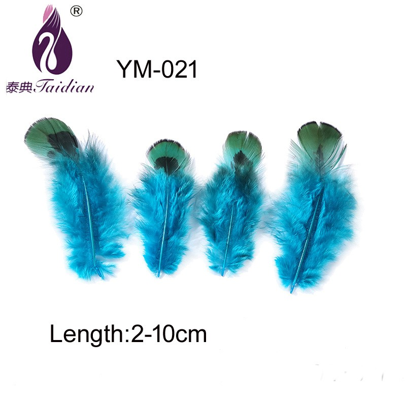 YM-021 Blue Feather SADDLE PHEASANT chicken plumes 2-10cm length