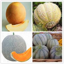 20pcs/bag Cantaloupe seeds ,Different kinds Honey melon Organic fruit seeds Extra-big Extra-sweet perennial HaMi melon plant pot(China (Mainland))