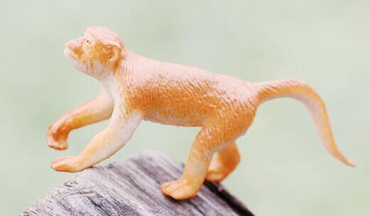 Moss micro landscape decoration Mini long tail monkey DIY assembly of small ornaments(China (Mainland))