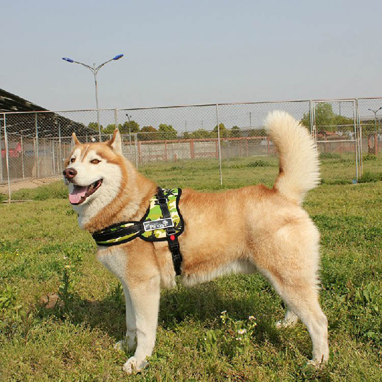Гаджет  New Soft Padded Adjustable Sport Working Training Large Dog Harness Leash Chest Strap Vest Pet Products Dog Accessories None Дом и Сад