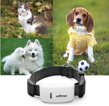super mini TK909 waterproof tracker long standby time dog cat  Pet personal gps tracker/IOS /Andriod App free website service(China (Mainland))
