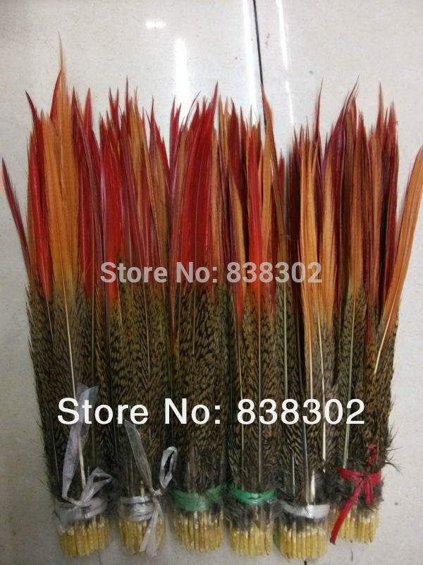 58-10inch 20-25cm DIY pheasant feathers plume red sword rare precious natural bulk feather - Time Wood's store