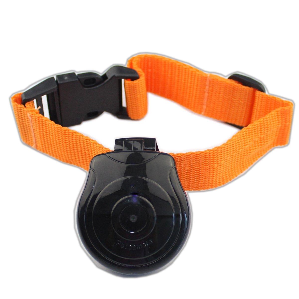 PHFU!Digital Pet Collar Cam Camera Mini Video Recorder Cam Camera DVR Video Recorder Monitor For Dog Cat Puppy Black