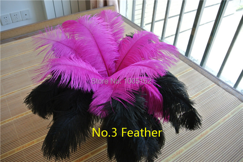 Wholesale -100pcs 12-14inch(30-35cm) black and hot pink Ostrich Feather plumes Wedding centerpiece feather decor table decor(China (Mainland))