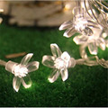 AC220V 10M 50Led decorative Christmas cherry blossom light string of lights for outdoor garland New Year