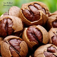 Linan specialty food Hickory nut  walnut Butter hand peel pecans Nuts pecan nuts snacks on sale wholesale